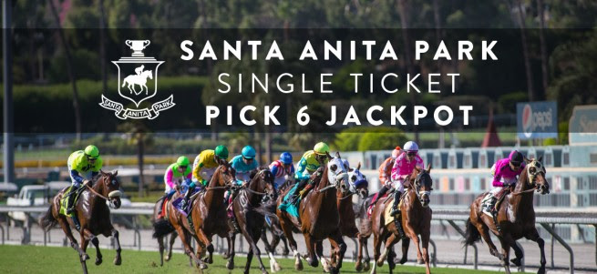 Pick 6 horse betting bet365 financial betting for dummies